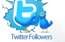 Make Your Business Popular with Twitter Marketing