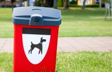 Solutions For Dog Waste Management For Municipalities, City And State Managers
