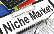 Learn how you can Achieve Success in Business with Niche Marketing