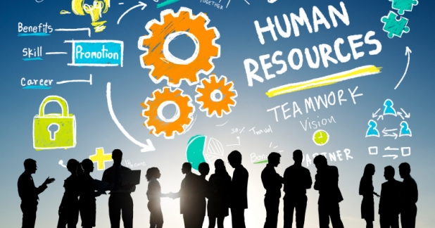 Top tips for improving your business's HR processes