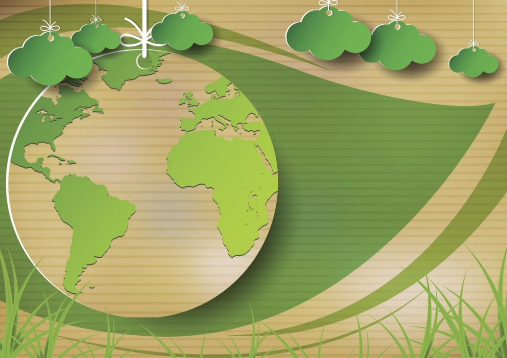 How To Make Your Organisation More Environmentally Friendly