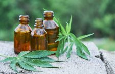 Top Tips for setting up a CBD Oil Business